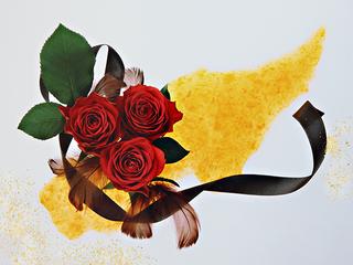 写真の新表現を模索する写真家:柴原薫の作品を広めていきたい。