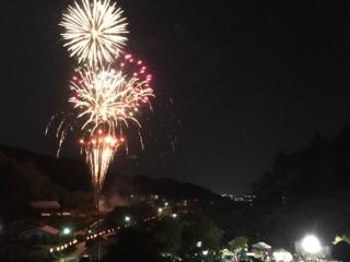 山形県村山市「よるのバラまつり」で未来へ向けた希望の花火を!