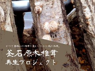 東日本大震災の奇跡と悲劇の町鵜住居で釜石原木椎茸を再生したい