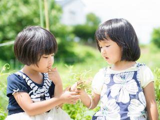 「VEGAN子育て」を支援する情報サイトを開設したい!
