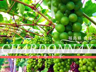 福島 会津盆地が一望できる、ブドウ畑が広がる丘を守りたい!!