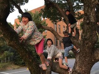 子どもを野生児に!自由にのびのび遊べる、学童保育所オープン
