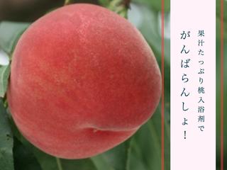 福島県の桃はおいしくて安全!入浴剤にしてイメージを変えたい