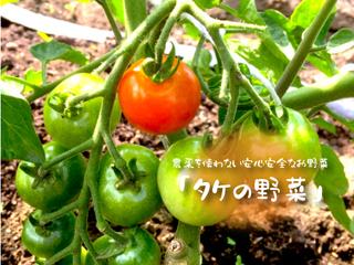 農薬を使わない野菜を栽培して、安心できる食材をご提供したい!