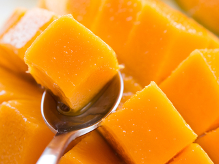 """日本初!果物界最高糖度の""""幻のマンゴー""""をあなたに届けたい!"""