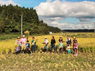 歌のある稲刈りプロジェクト
