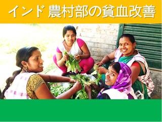 鉄なすが貧血の危機を救う!インドへ届け鉄なすプロジェクト!