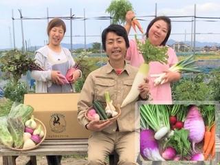 やっかいモノの海藻がお宝に!?海藻農法で育ったお野菜を全国へ