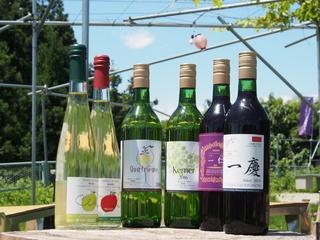 ふくしま農家の夢ワイン、世界に通用するワインを造りたい!