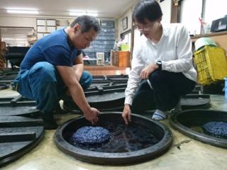 地域活性化を目指し、徳島大学の学生が藍染体験イベントを開催!