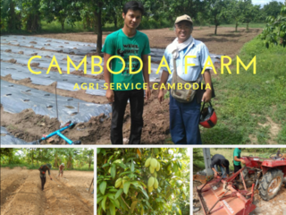 農家を夢見るカンボジアの若者たちと農場を発展させていきたい!
