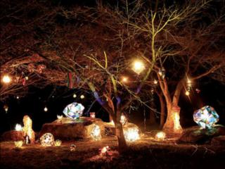 春日部で、夜親子で参加できる「おとぎの森のカーニバル」開催!