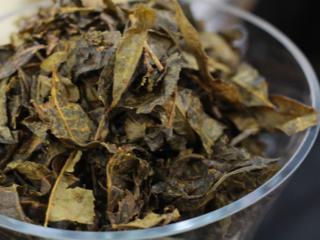 徳島産 乳酸菌発酵茶「阿波晩茶」を日本の発酵茶代表に育てたい