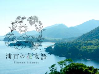 浦戸諸島のお花を活用したお菓子を開発し、島おこしをしたい!