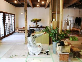 有田焼の町で、築100年の陶磁器商家に新しい息吹を!