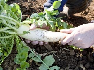 農家を身近に感じてもらい、農業のカッコ良さを知ってほしい!