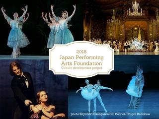 若者に本物の舞台芸術にふれてもらいたい!文化育成プロジェクト