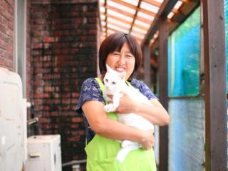 100匹の猫ちゃんと暮らす秩父の温泉宿に譲渡施設をつくりたい!