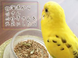 """""""とりきち横丁""""第1号店オープン!鳥さんたちが暮らしやすい社会を"""