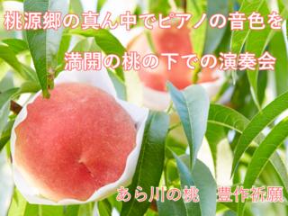 桃源郷の真ん中でピアノの音色を。満開の桃花の下で演奏会開催へ
