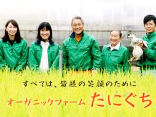 環境に優しい農業を徹底的に実践!ソーラーパネルを設置したい!