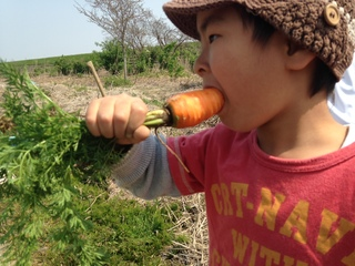 おこさまランチ革命!野菜をほおばる魔法のソースを開発!