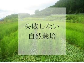 情報の少ない「自然栽培」を成功させるためのノウハウを伝える!
