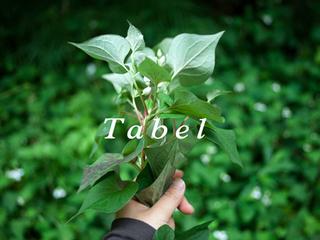 身体を慈しみ、地域を活かす国産薬草茶を作りたい!