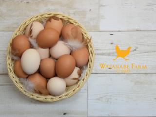 ワタナベファームの産みたて卵をいつでも食べてもらいたい!