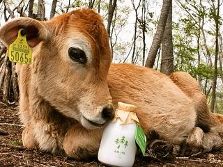 機材を改修し、震災で販売休止となった森林ノ牛乳を復活させたい