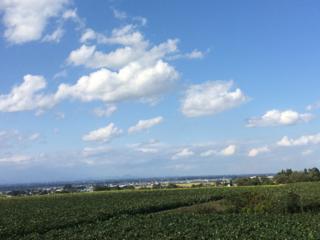 都会にはない田舎の良さを!宮城県「色麻町」フリーペーパー作成