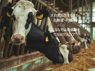 """酪農家の宿!牛と生きる中標津を体験しながら楽しむ""""USHIYADO"""""""