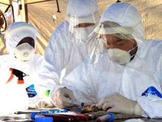 致死率最大90%にもおよぶ「エボラ出血熱」治療薬開発の一歩へ