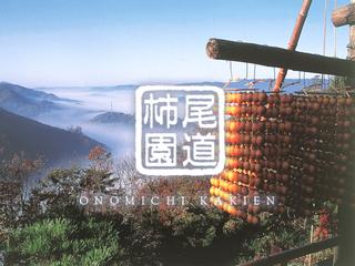 """""""柿の経済""""復活へ。尾道の里山に空家を活用した柿渋発信の拠点を"""
