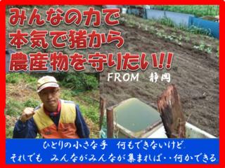 静岡市中山間地の農産物を猪から守りたい!檻オーナーを募集!