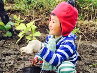 洞爺湖で、地球からの愛を体感しながら学ぶ植樹祭を開催したい。