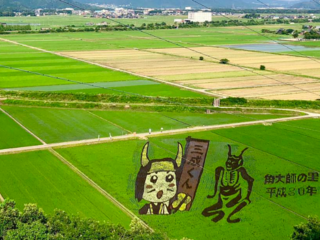 滋賀県長浜の文化を後世に!虎姫田んぼアートを映像で残したい!