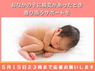 −1才の命に向き合うお手伝い   「胎児ホットライン」 設立へ