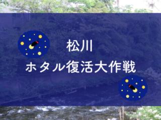 「松川ホタル復活大作戦」伊東市の市街地にホタルを呼び戻す!