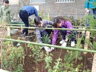藝大キャンパスを通る道沿いを、武蔵野の緑あふれる空間へ