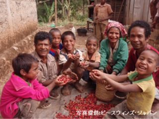 コーヒー×観光で東ティモールの小規模コーヒー農家の収入向上