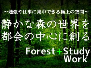 勉強や仕事に集中できる空間…静かな森の中の世界を都会の中心で
