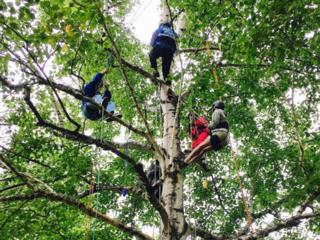 北海道十勝の子どもに本物の木登り(ツリーイング)をしてほしい