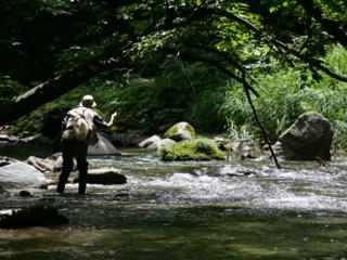 『釣りと旅と友情のフライフィッシングムービー』を制作したい!