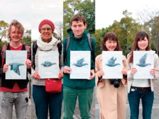 日本から世界へ。鳩の絵で平和への思いを繋げていく。