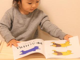 小5の問題を幼児が遊んで覚える?!都道府県漢字CDブック