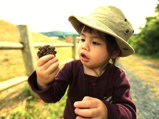 子供がのびのび遊べる公園つきカフェを気仙沼にオープンします!