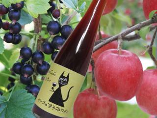 青森のカシスを全国に!りんごとカシスでワインを作りたい!