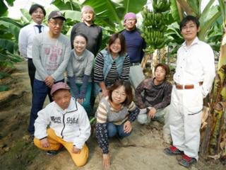 純国産おかやまバナナの栽培とB型就労施設とのコラボレーション