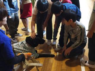 小中学生と盲導犬のふれあい教室開催を増やしたい!